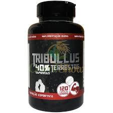 Tribulus Terrestris ( 40% Saponinas ) – VR Suplementos